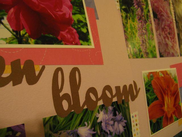 Garden blooms02