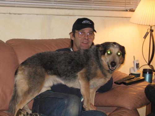 Nov. 22 - Scardy Dog